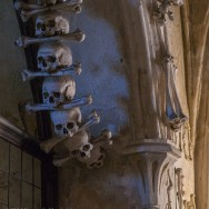 Skulls in line in shadow
