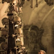 person viewing skulls
